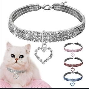 Cat or small dog collar